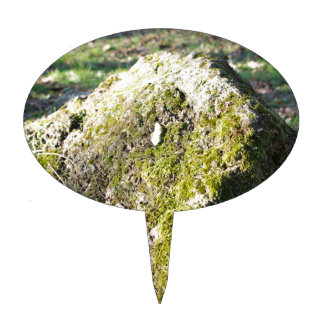 Large stone mossy boulder at  forest lawn cake topper