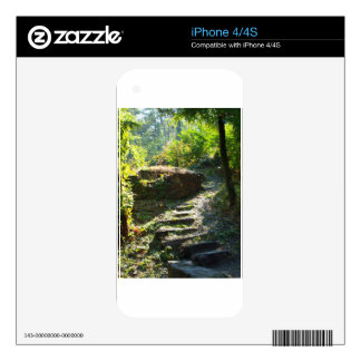 Large stone steps surrounded by trees on the path decal for the iPhone 4
