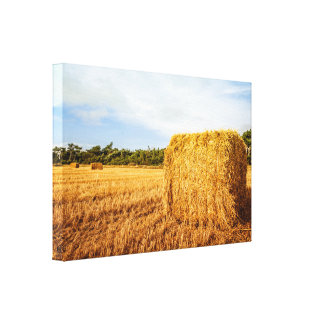 Large straw bale on a field canvas print