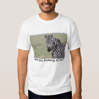 Large T-Shirt with picture of Zebra