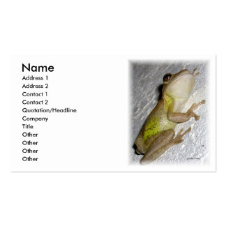 Large tree frog clinging to stucco wall photo business card