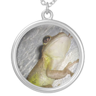 Large tree frog clinging to stucco wall photo pendants