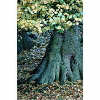 Large tree root, Yorkshire, England Statuette