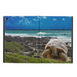 Large turtle at the sea edge cover for iPad air