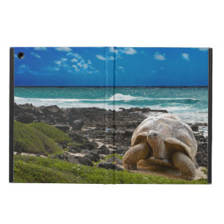 Large turtle at the sea edge iPad air cover