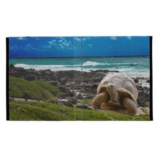 Large turtle at the sea edge iPad case
