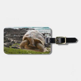 Large turtle at the sea edge luggage tag