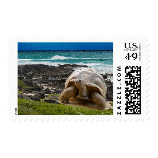 Large turtle at the sea edge stamp