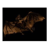 Large Vampire Bat in Flight Postcard
