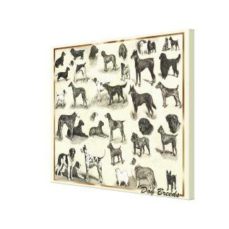Large Vintage Dog Breeds Vets and Dog lovers Hound Canvas Print