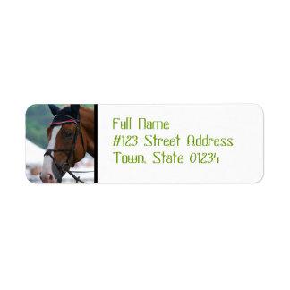 Large Warmblood Horse Address Labels