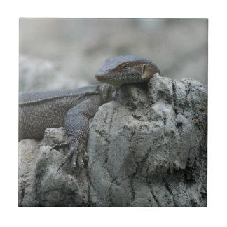 Large Water Monitor Lizard Ceramic Tile