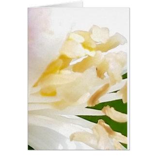 Large White Flower Greeting Card
