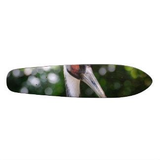 Large White Naped Crane Skateboards