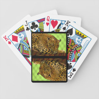 Large Wild Cat Relaxing Bicycle Playing Cards