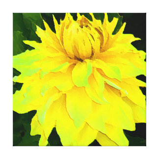 Large Yellow Dahlia Gallery Wrap Canvas