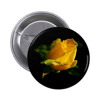 Large Yellow Rose Pinback Buttons