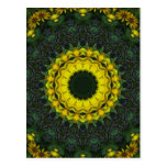 Large Yellow Wildflower Kaleidoscope Art 8 Postcard