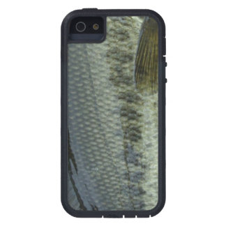 Largemouth Bass by Patternwear© Fly Fishing iPhone SE/5/5s Case