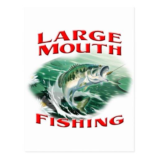 Largemouth Bass Fishing Post Cards