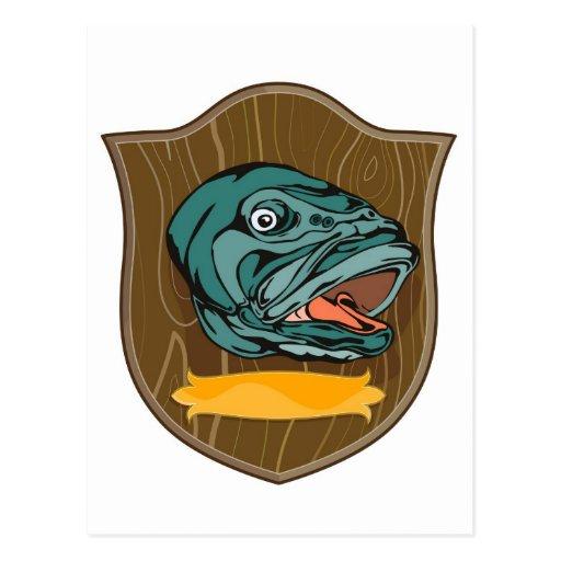 largemouth bass head trophy postcard