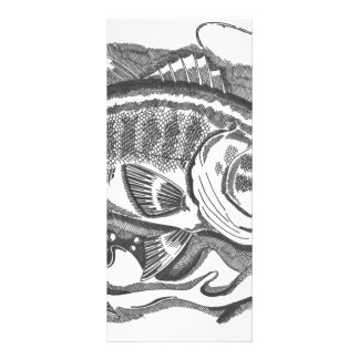 Largemouth Bass in the cattails Rack Card Template