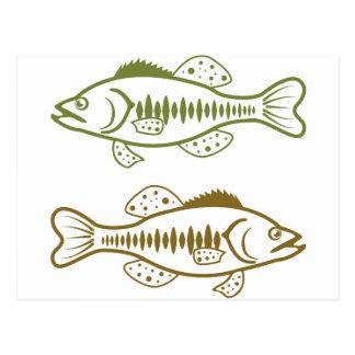 Largemouth Bass Postcard