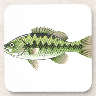 Largemouth Spotted Green American Bass Vector Beverage Coaster