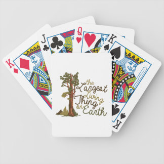 Largest Living Thing Bicycle Playing Cards