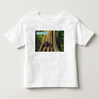 Largest Recorded Tree in BC 1896 Cedar Tree Toddler T-shirt