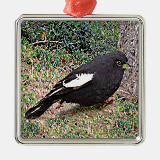 Lark Bunting (Colorado) Metal Ornament
