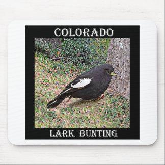 Lark Bunting (Colorado) Mouse Pad