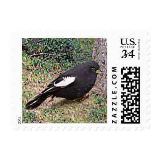 Lark Bunting (Colorado) Postage