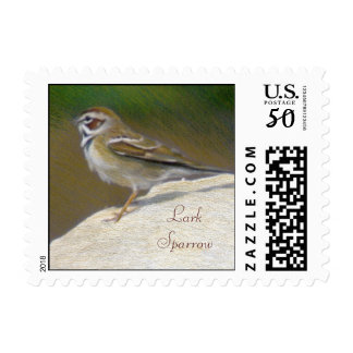 Lark Sparrow Fine Art Nature Postage