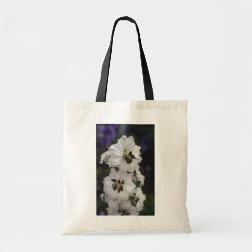 Larkspur blanco, (Delphinium Hybride) flores Bolsa