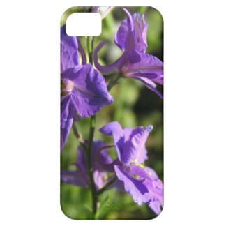 Larkspur blooms iPhone SE/5/5s case