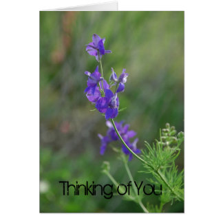 Larkspur Feel Better Card