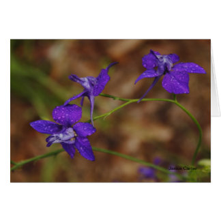 Larkspurs with Dew Stationery Note Card