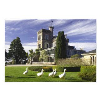 Larnach Castle, Otago Peninsula, Dunedin, Art Photo