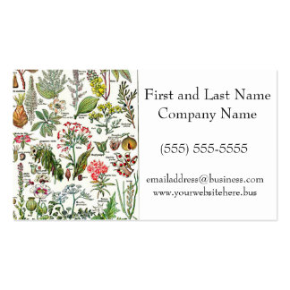 Larousse Dangerous Plants II Painting Double-Sided Standard Business Cards (Pack Of 100)