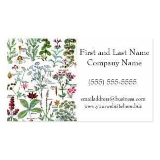 Larousse Digestive Plants Painting Business Cards