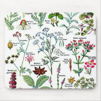 Larousse Digestive Plants Painting Mouse Pad