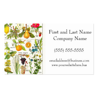 Larousse Fruit Orange Pear Grape Painting Double-Sided Standard Business Cards (Pack Of 100)