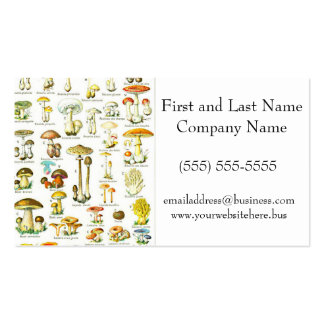 Larousse Mushroom Fungus Nature Painting Double-Sided Standard Business Cards (Pack Of 100)