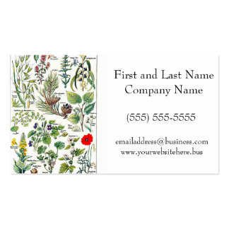 Larousse Pine Cone Tree Flower Branch Painting Double-Sided Standard Business Cards (Pack Of 100)