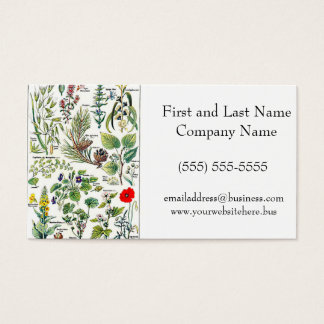 Larousse Pine Cone Tree Flower Branch Painting Business Card