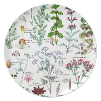 Larousse Plantes digestives, stimulantes Dinner Plate