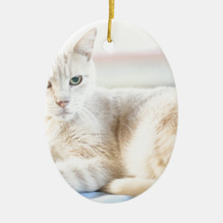 Larry Ceramic Ornament