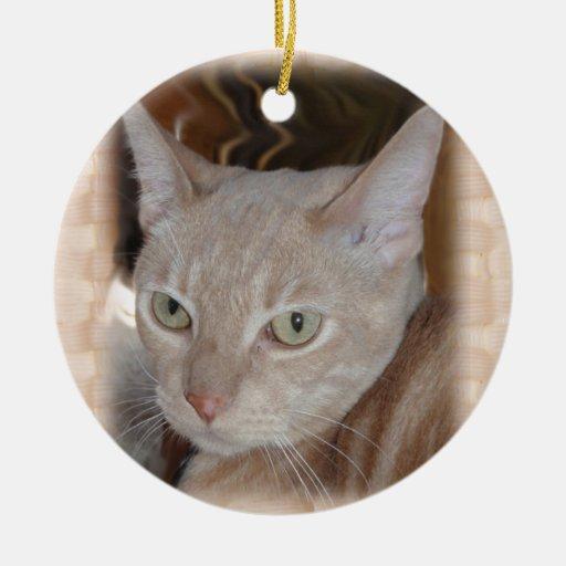 Larry el ornamento de cerámica del gato adornos de navidad