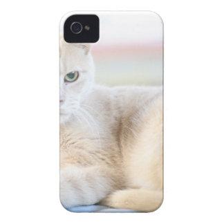 Larry iPhone 4 Case-Mate Cárcasa